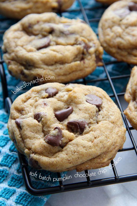 Perfect Soft Batch Pumpkin Chocolate Chip Cookie Recipe from bakedbyrachel.com