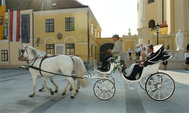 getting there ... with a typical Viennese Fiaker horse carriage