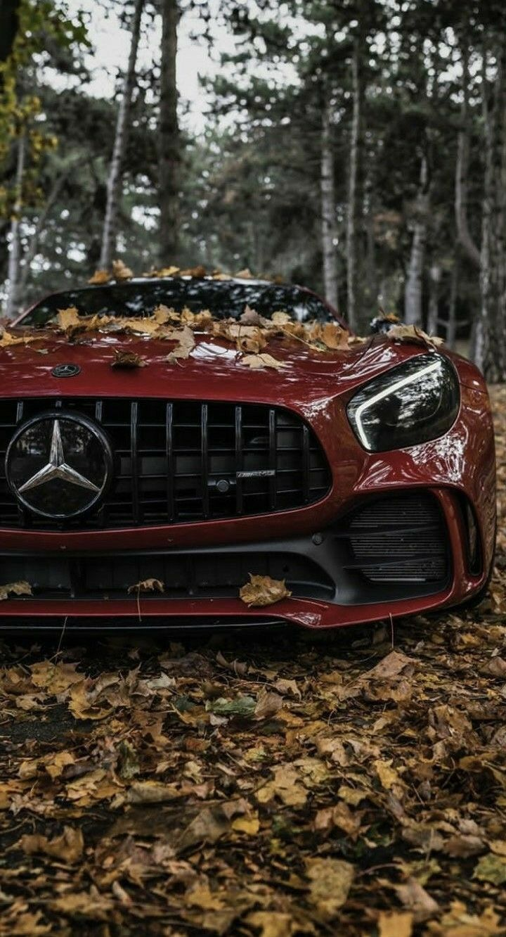 D Car Gift Perfect Present Gorgeous Perfection Special Birthday Queen Ideas Best Handsome Nice Souvenir Wedding Gifts Chri Mercedes Benz Cars Benz Car Bmw Cars