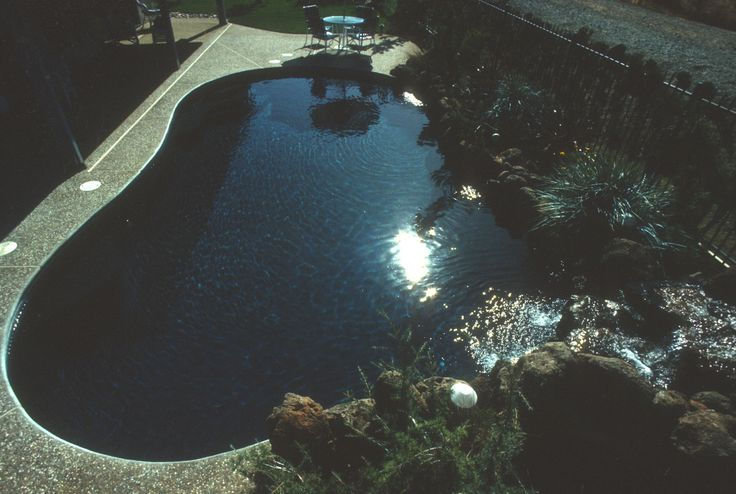 Very Natural Pool With A Black Pearl Pebble Tec Interior Finish - Black pearl pebble tec pool bottom