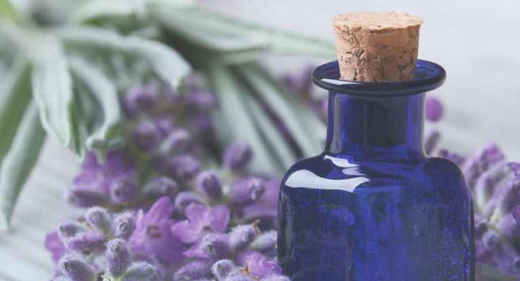 Are you considering essential oils as an alternative treatment for psoriasis? Learn which oils may help treat psoriasis, how to use them, and more.