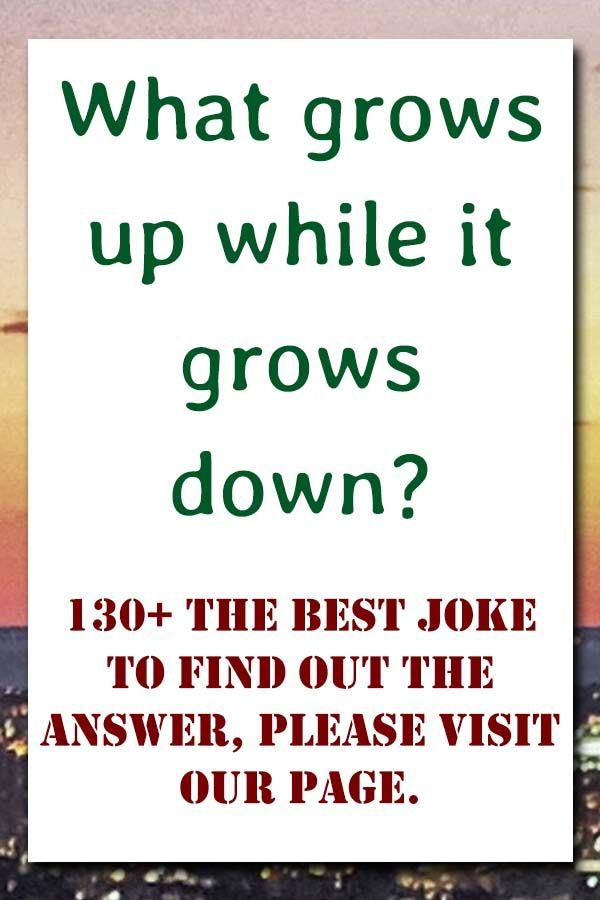 130 The Best Joke In 2020 Good Jokes Jokes And Riddles Clean Jokes