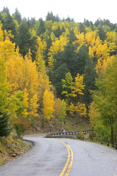 Ruidoso, New Mexico - can't wait to see the leaves turn!