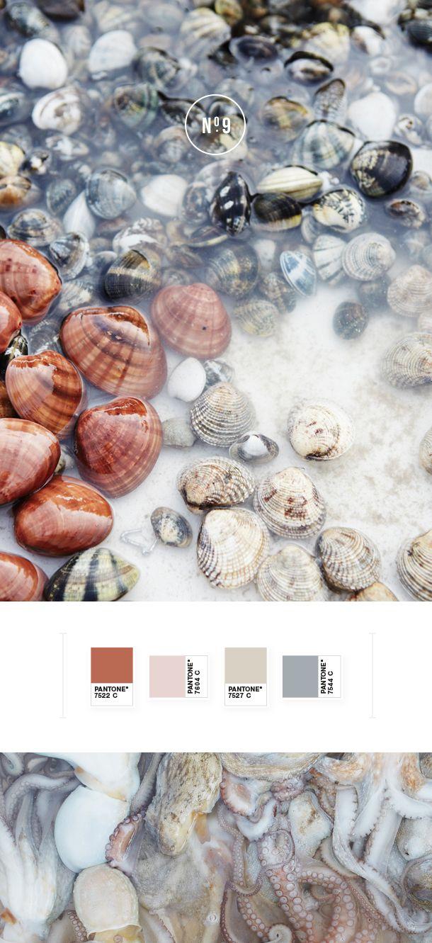 Gorgeous colour palette | N O T S T A T I C Blog