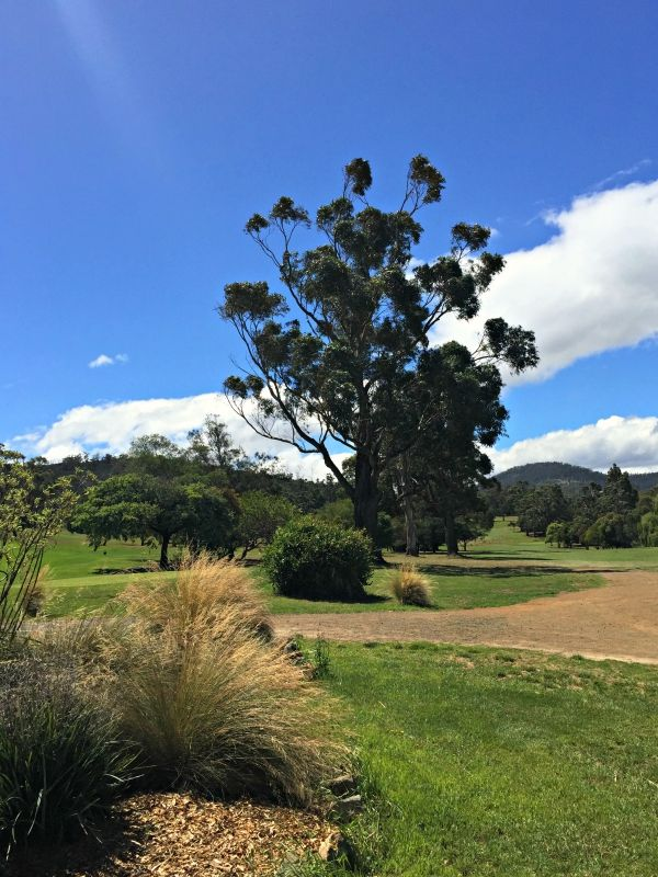 Rosny Park Public Golf Course - Lovely Scenery, overlooking Kangaroo Bay and the Derwent River #Hobart #Tasmania #golf Photo and article for think-tasmania.com
