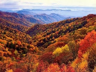 smokey mountains in the fall | Great Smoky Mountains Fall Colors