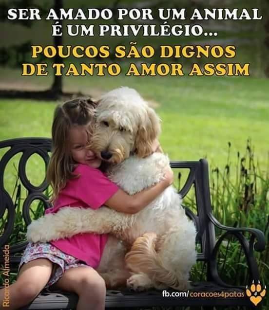VERDADE! <3 #petmeupet #filhode4patas #maedecachorro #paidecachorro #cachorro