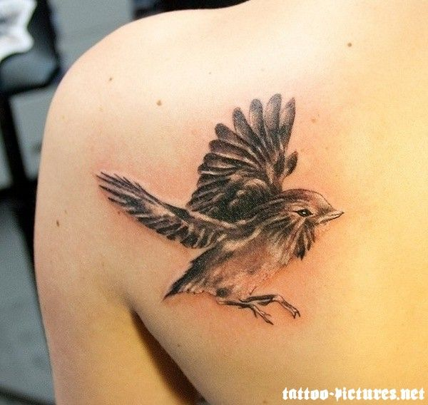 1000 ideas about colorful bird tattoos on pinterest for Realistic bird tattoo