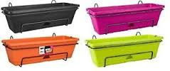 Image result for elho hanging troughs can plant little ruby in here