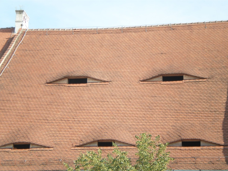 Roofs have eyes in Sibiu, Romania