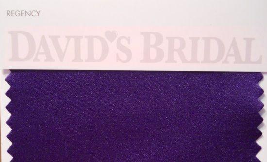 "David's Bridal color swatch sample ""Regency""-purple"