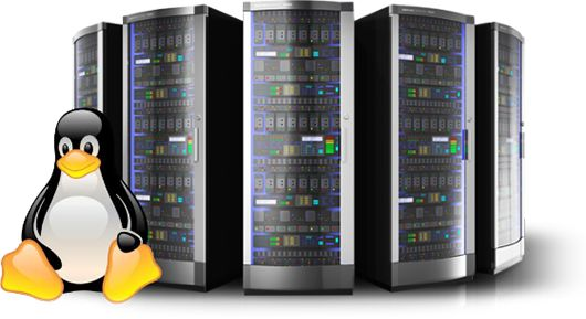 Here is a list of Top 5 Linux Servers for Small Businesses. The list includes ClearOS, Ubuntu Server, Red Hat Enterprise Linux, SUSE Enterprise Linux, Debian and CentOS.