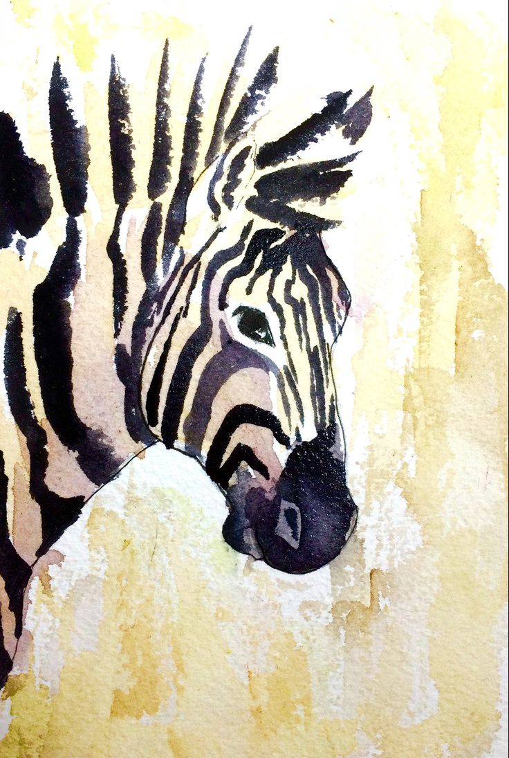 Zebra Watercolor Art Print, Zebra Wall Art, Zoo Animal Nursery Art, Baby  Zebra