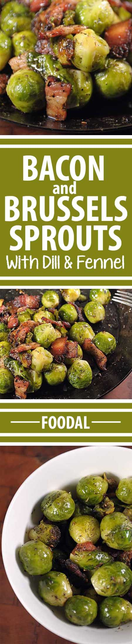 """Have you always thought that Brussels sprouts were """"icky?"""" If so, give this recipe a whirl. The added bacon gives it the flavor and texture that makes it very tasty. And the added fats helps your body absorb the nutrients packed into the sprouts. And that is what is called a win-win! Get the recipe here: http://foodal.com/recipes/veggies/organic-brussels-sprouts-sauteed-with-bacon/"""