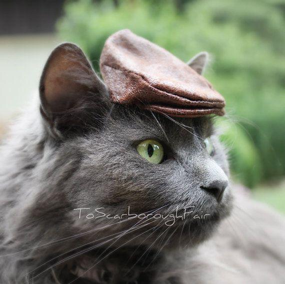Ivy Cap pour chats - chapeau plat - conduite Hat - Newsie Newsboy cap, casquette Golf, casquette Jeff, coupe-fromage
