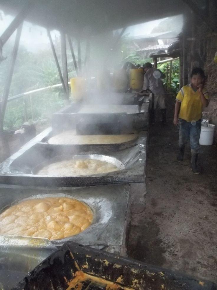 """Fondos llenos de zumo de caña de azucar que al hervirse y deshidratarse, produce al final, panela, en """"trapiche"""" de finca de la vereda de Alto Cáceres."""