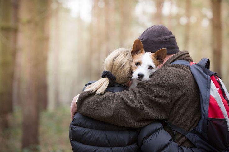 Dog Photography Ideas