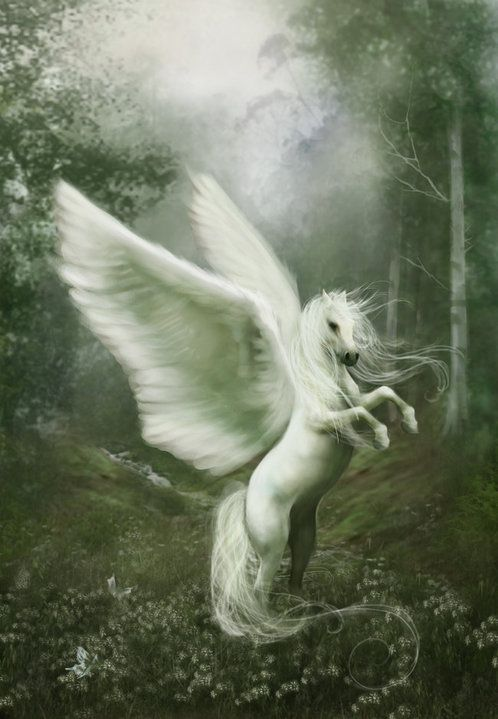 1402 Best Unicorn Images On Pinterest Unicorns Fantasy