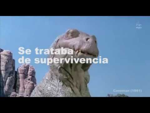 Mandril | Freespace - YouTube