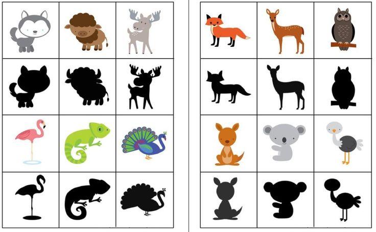 Animalitos y sombras