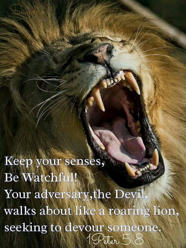 """1 Pietro 5:8 """"Mantenetevi assennati,siate vigilanti. Il vostro avversario, il Diavolo, va in giro come un leone ruggente, cercando di divorare qualcuno."""""""