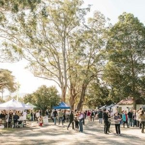 Berry Markets & Country Fair