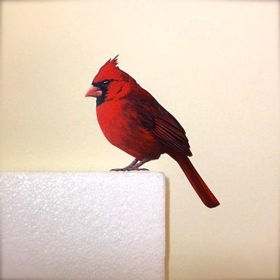 Cardinal Sticker Wall Decal Removable Sticker Bird Stickers Wall Murals Restickable Bird Art Wal Wall