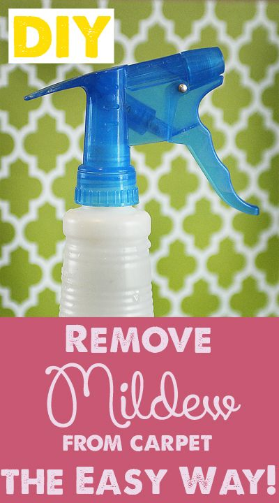 2 Easy Methods For Removing Mildew Odor From Carpet
