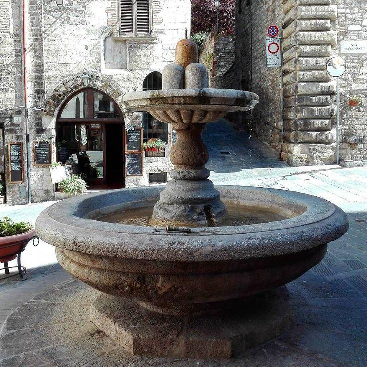 Fontana del bargello Gubbio (PG) #fontana #fountain #bargello #gubbio #umbria #italia #italy #history #historical #holiday #travelling #viaggio #architecture #igers #igersbergamo #igersitalia #igersitaly