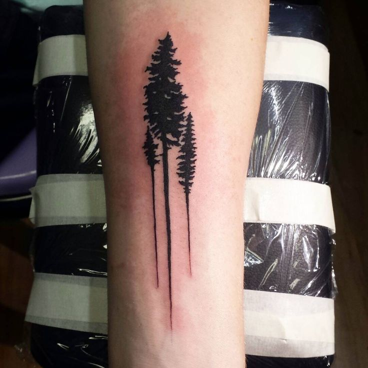 cool Top 100 Tattoo Tree | Fun little tattoo I did yesterday #tree #trees #treetattoo #tattootree
