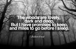 Miles to go before I sleep.Robert Frostings Quotes, Wood, Butterflies, Red Riding Hoods, A Tattoo, Robert Frostings Poems, Miles, Favorite Quotes, Sleep