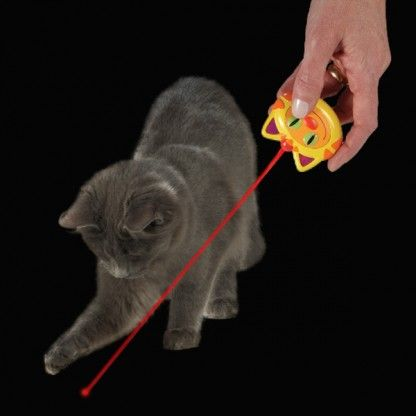 Check out this Laser Fun for Cats