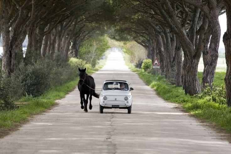 oh <3 also my dream fun car! <3 I could take my Mini horse Jango for a run, lol!