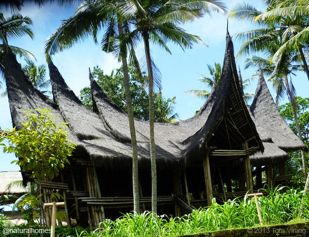 This is one of the buildings at Bambu Indah, a hotel resort in Bali owned by John Hardy of Green School fame. It's built with sustainably grown black bamboo from Java. Black Bamboo (Gantochloa atroviolacea) grows as tall as 12m in Central & West Java where it is known as Wulung. The design of this building, which was built in 30 days, is based on the rumah bagonjong (spired roof house) of the Minangkabau people who live in Sumatra. More, including video, at www.naturalhomes.org/minang.htm