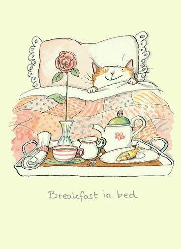 Desayuno con gato