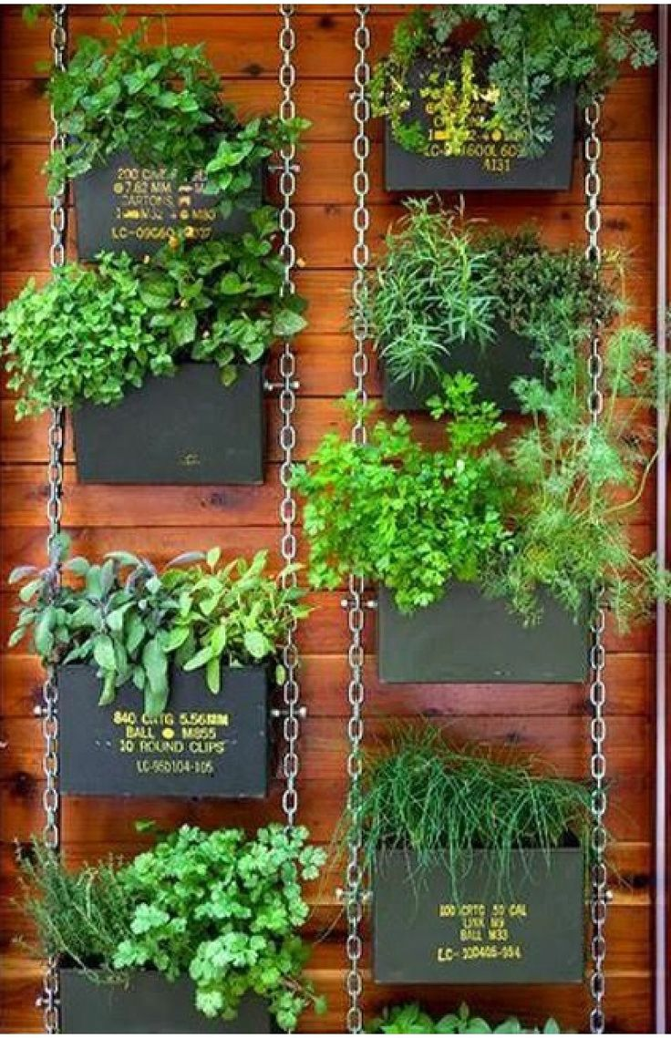 180 best vertical farming images on pinterest | vertical gardens ... - Der Vertikale Garten Live Screen Danielle Trofe