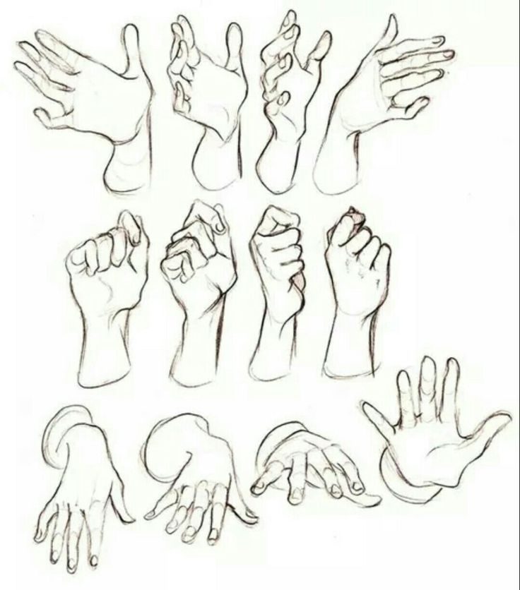 Hand Reference Hand Drawing Reference Figure Drawing Reference Hand Reference