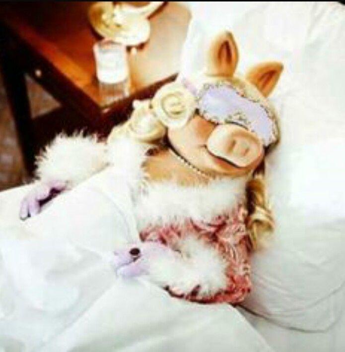 Best 25 Piggy Muppets Ideas On Pinterest: Más De 25 Ideas Increíbles Sobre Citas De Miss Piggy En