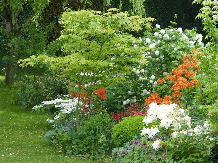 Les 569 meilleures images propos de plants combination for Entretien jardin printemps