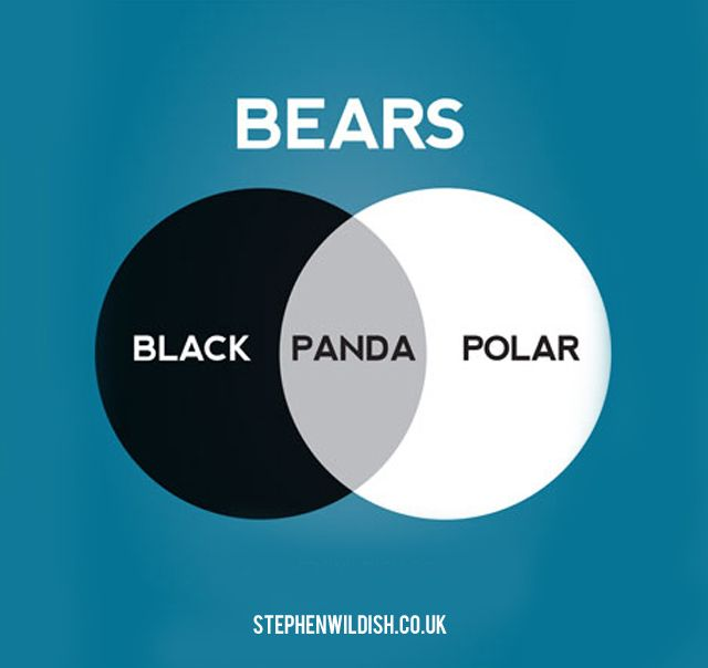 Panda Bear Diagram Fujitsu Ten Car Stereo Wiring Clever Venn Diagrams By Stephen Wildish Design Funny Charts