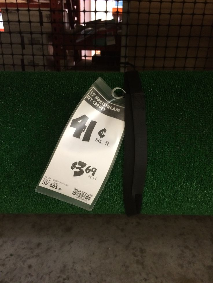 Typical astroturf- far more cost-effective