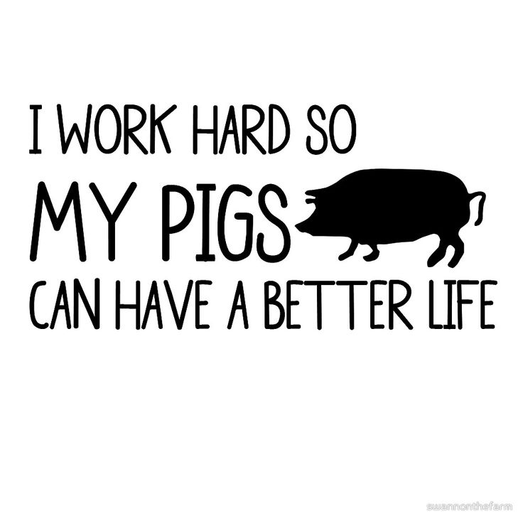 I WORK HARD SO MY PIGS CAN HAVE A BETTER LIFE by swannonthefarm