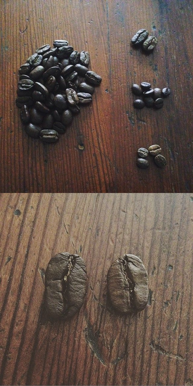 sorting coffee beans... #coffee #coffeebeans #melbourne #W.I.P #madeinmelbourne