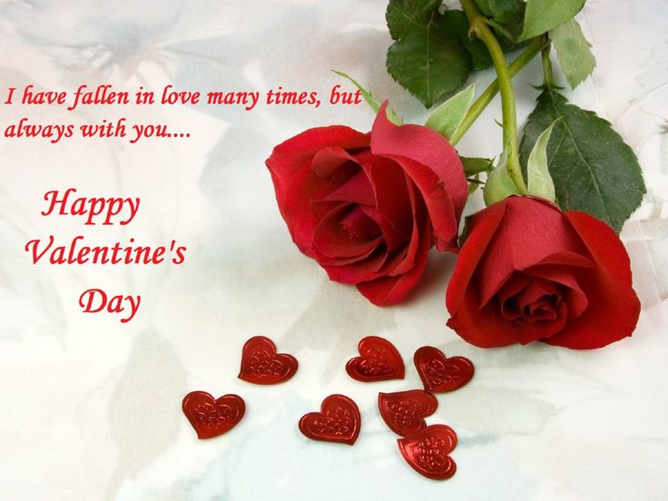 Beautiful Rose Images & Wallpapers with Valentine Messages & Greetings