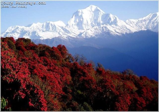 Tourist Attraction India: North India : Dehradun Hill Area