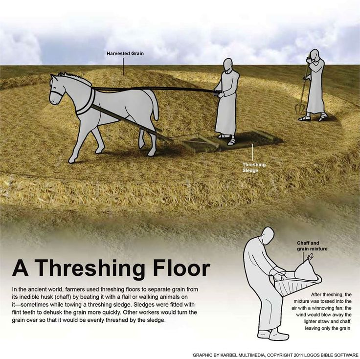 Threshing floor meaning in hebrew 28 images for Meaning floor