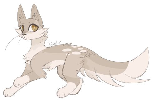 This is Creamtuft. She is a warrior of Thunderclan. She is loyal and brave. She was once a kittypet named Arwen. She is kind and loves to hunt. (Me)