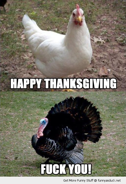 Funny Thanksgiving Meme (20)