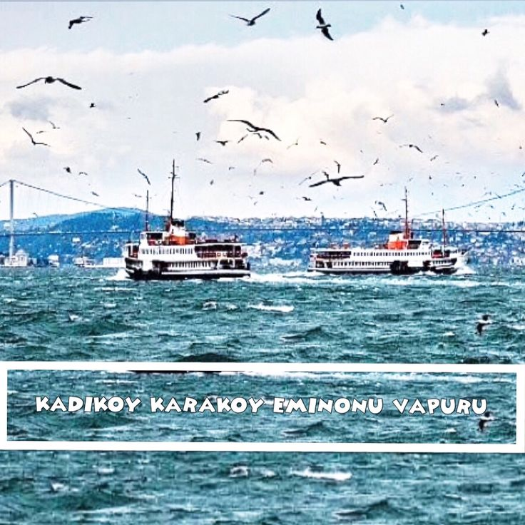 #kadıköykaraköyvapuru #kadıköyeminönüvapuru #istanbul #istanbulbeauty #instacolours #turkey #turkeyproject  #turkeyrealestate #istanbulproperty #istanbulproject #istanbulapartment #istanbulhouse #istanbulvilla  #istanbulrealestate #vsco #عقارات_اسطنبول #عقارات_تركيا #عقارات #اسطنبول #مشاريع_اسطنبول #تركيا #استثمار_اسطنبول #بيوت_اسطنبول…