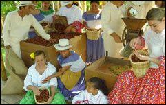 Recuca es el Recorrido de la Cultura Cafetera, donde los visitantes pueden asumir el papel del caficultor, de la semilla a la taza. En Recuca nos volvemos cafeteros, saboreamos el campo y nos divertimos a lo montañero.
